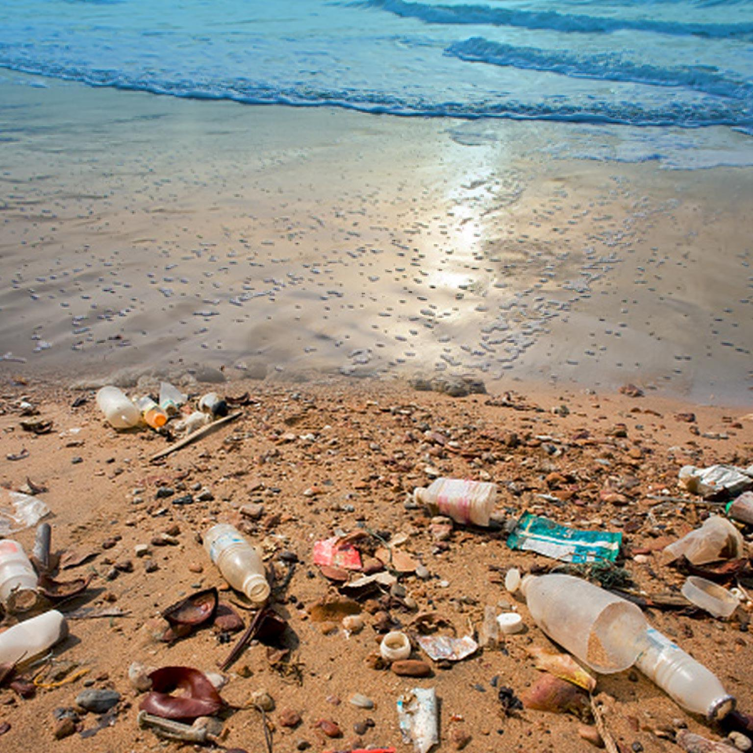 How you can help reduce plastic pollution.
